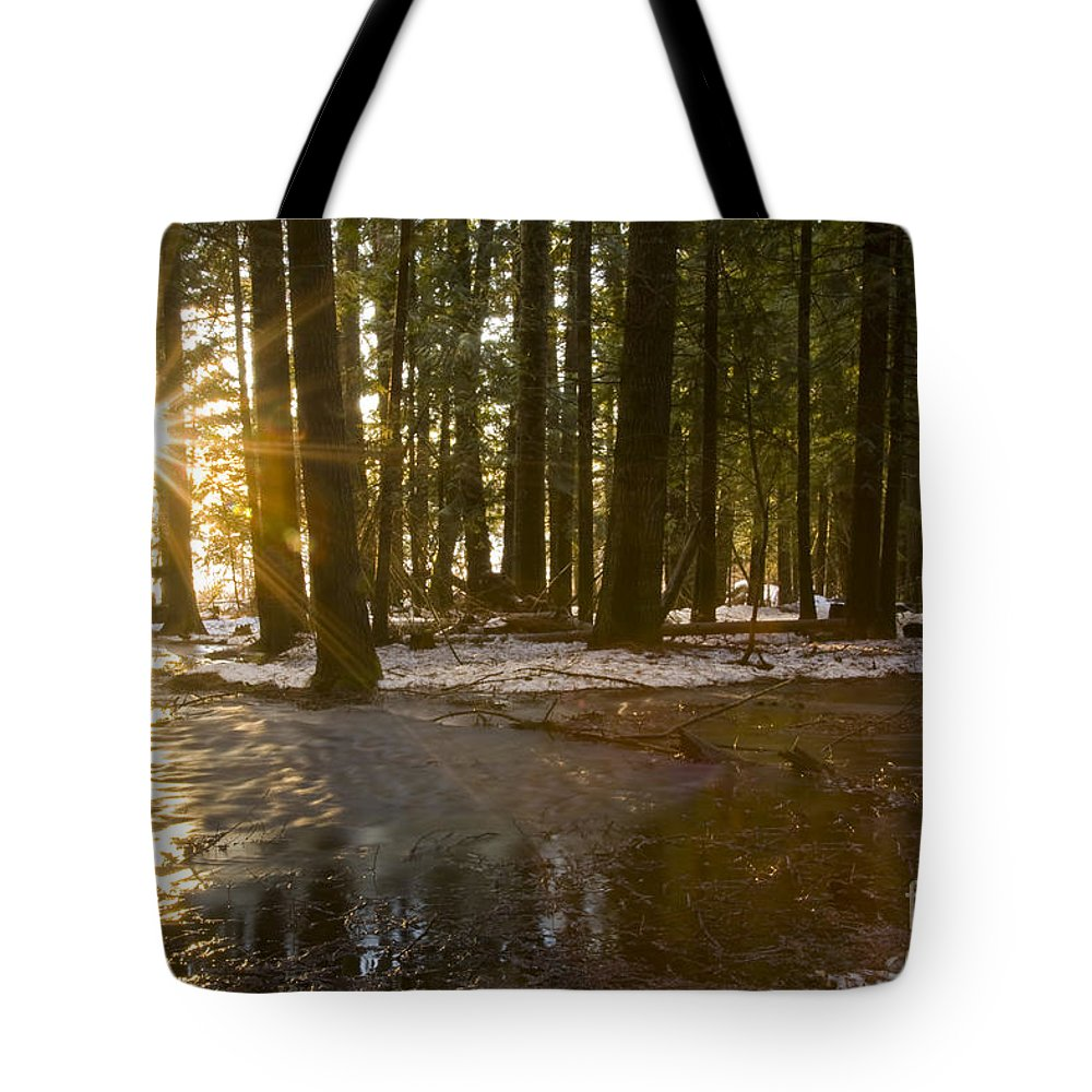 Sunburst Tote Bag featuring the photograph Spring Thaw by Idaho Scenic Images Linda Lantzy