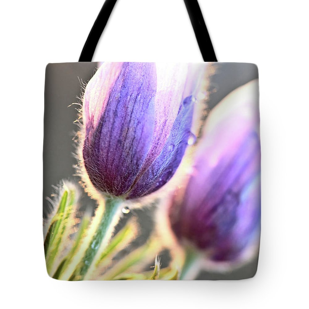 Spring Tote Bag featuring the digital art Spring Time Crocus Flower by Mark Duffy