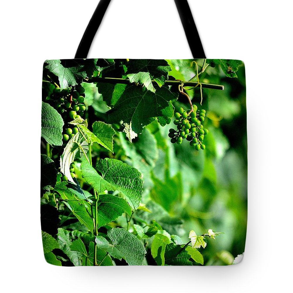 Spring Time Vineyards Tote Bag featuring the photograph Spring Time Vineyards by Charles J Pfohl
