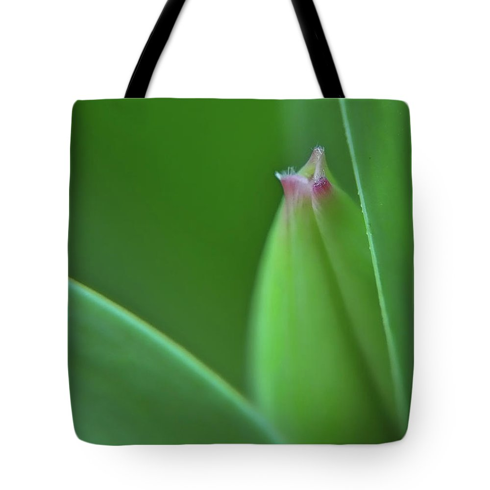 Flower Tote Bag featuring the photograph Spring Tulip by Susan Cliett