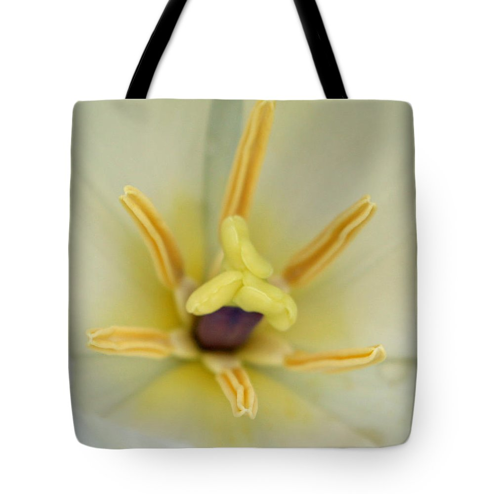 Tulip Tote Bag featuring the photograph Spring Tulips 201 by Pamela Critchlow