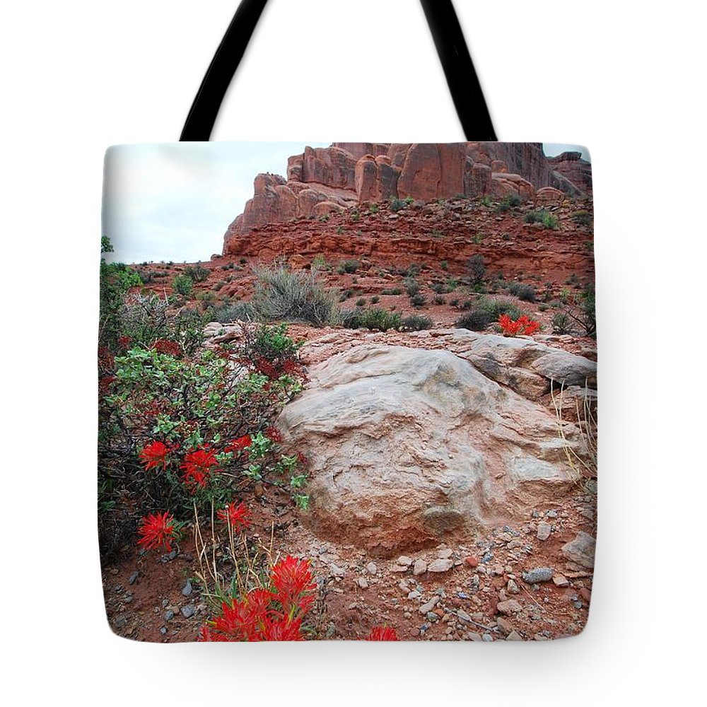 Spring Tote Bag featuring the photograph Springtime At Arches National Park by Cascade Colors