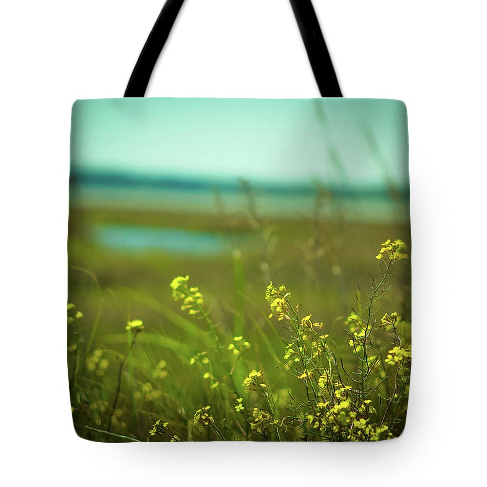 Beach Tote Bag featuring the photograph Springtime At The Beach by Amy Bishop