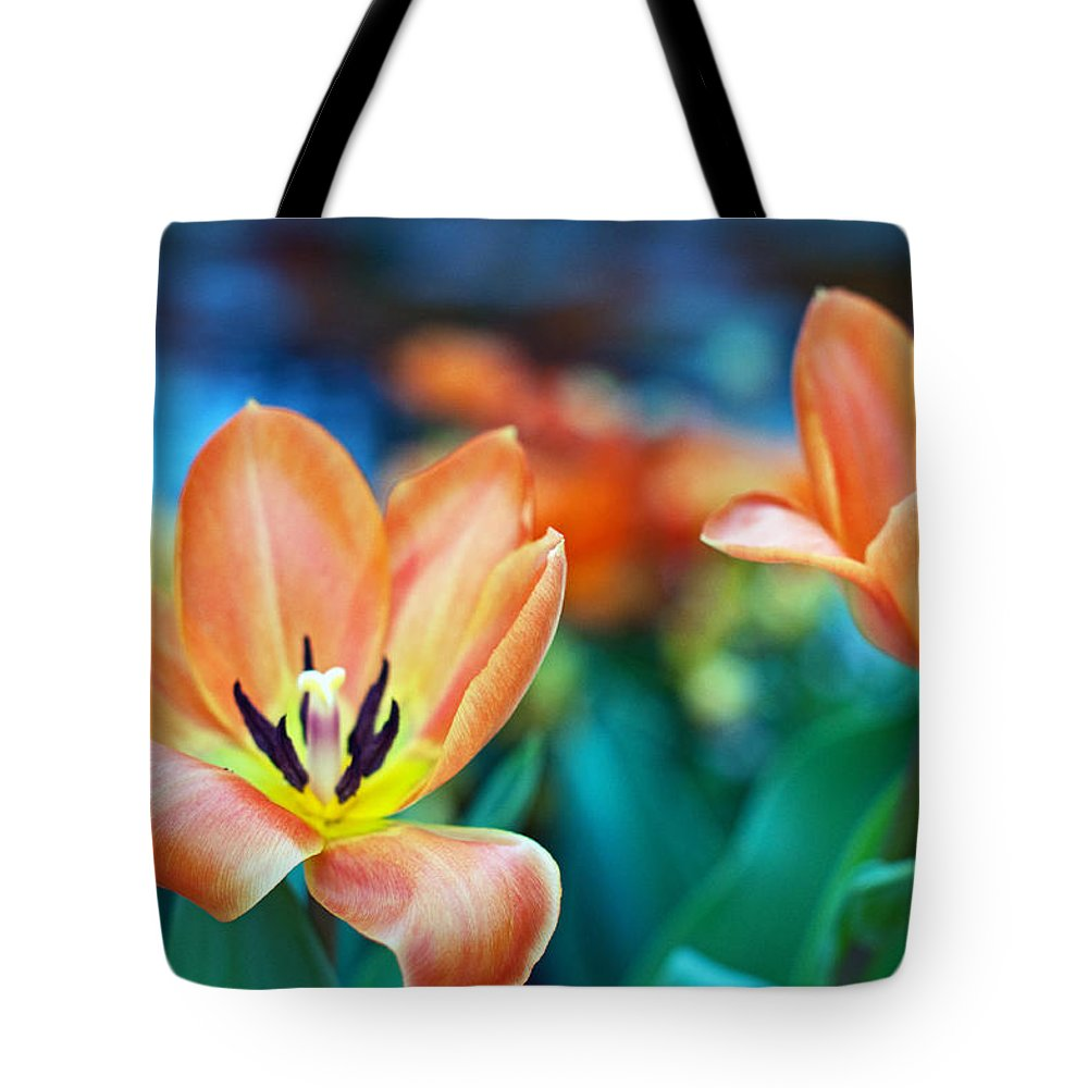 Lily Tote Bag featuring the photograph Springtime by Edward Congdon