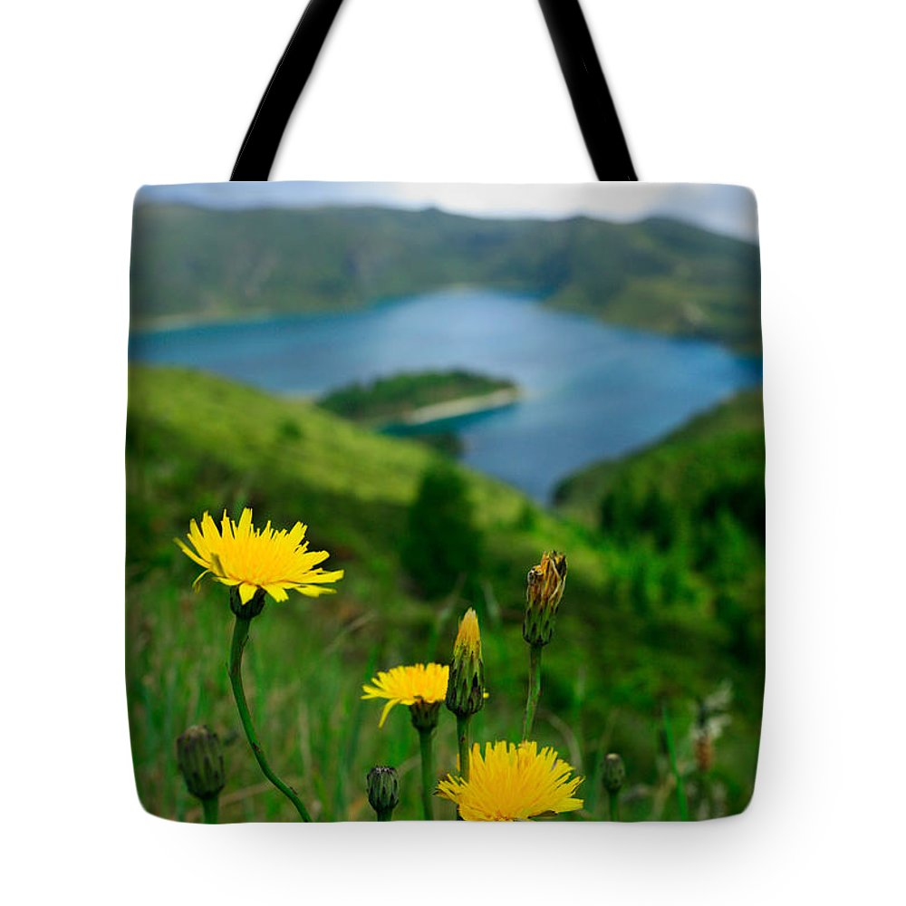Caldera Tote Bag featuring the photograph Springtime In Fogo Crater by Gaspar Avila