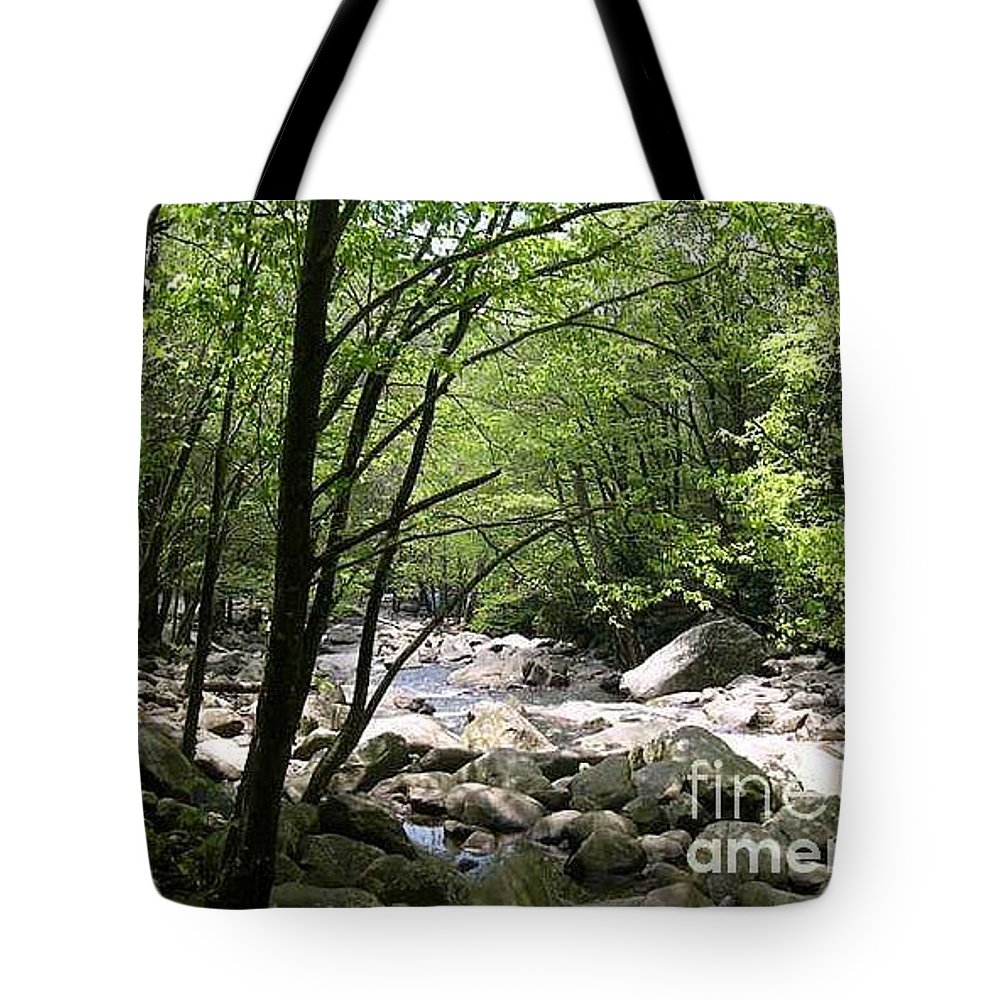Nature Tote Bag featuring the photograph Springtime In The Smoky Mountains by Barb Montanye Meseroll