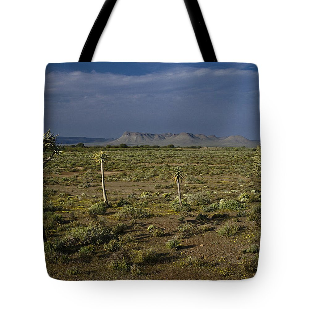 Africa Tote Bag featuring the photograph Springtime In The Western Cape by Michele Burgess
