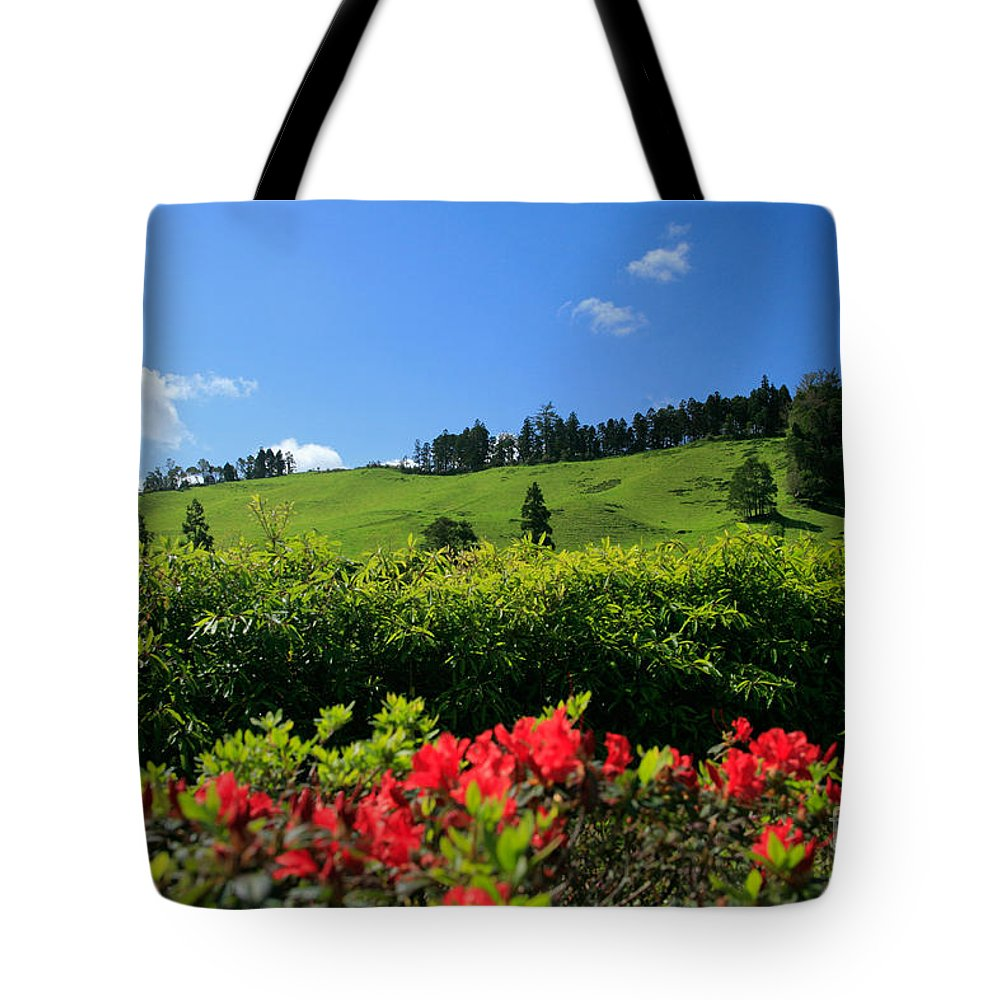 Countryside Tote Bag featuring the photograph Springtime Landscape by Gaspar Avila