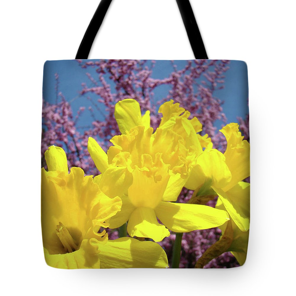 Nature Tote Bag featuring the photograph Springtime Yellow Daffodils Art Print Pink Blossoms Blue Sky Baslee Troutman by Baslee Troutman