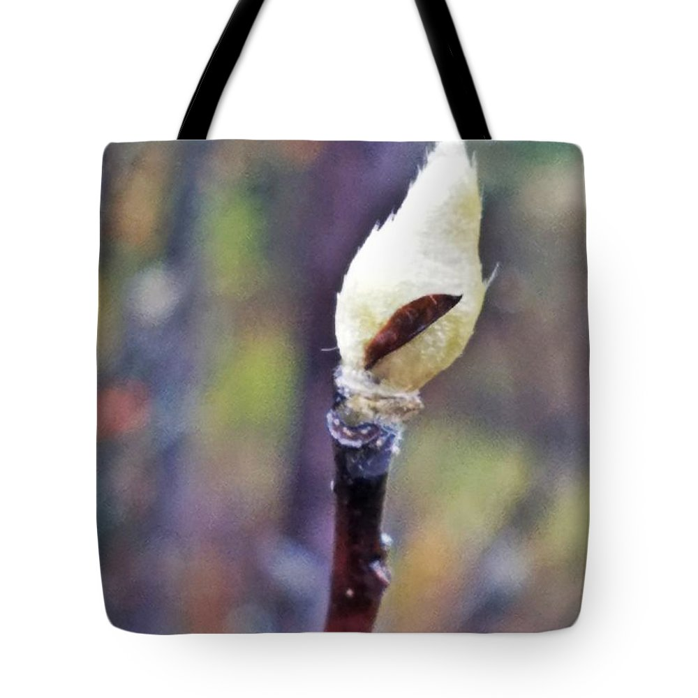 Sprout Tote Bag featuring the photograph Sprout by Maria Urso