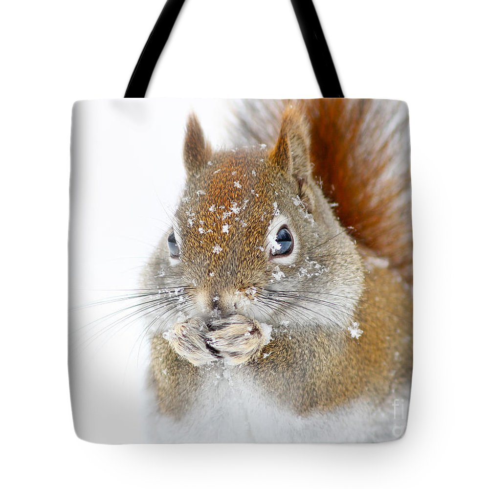 Animal Tote Bag featuring the photograph Squirel Portrait by Mircea Costina Photography