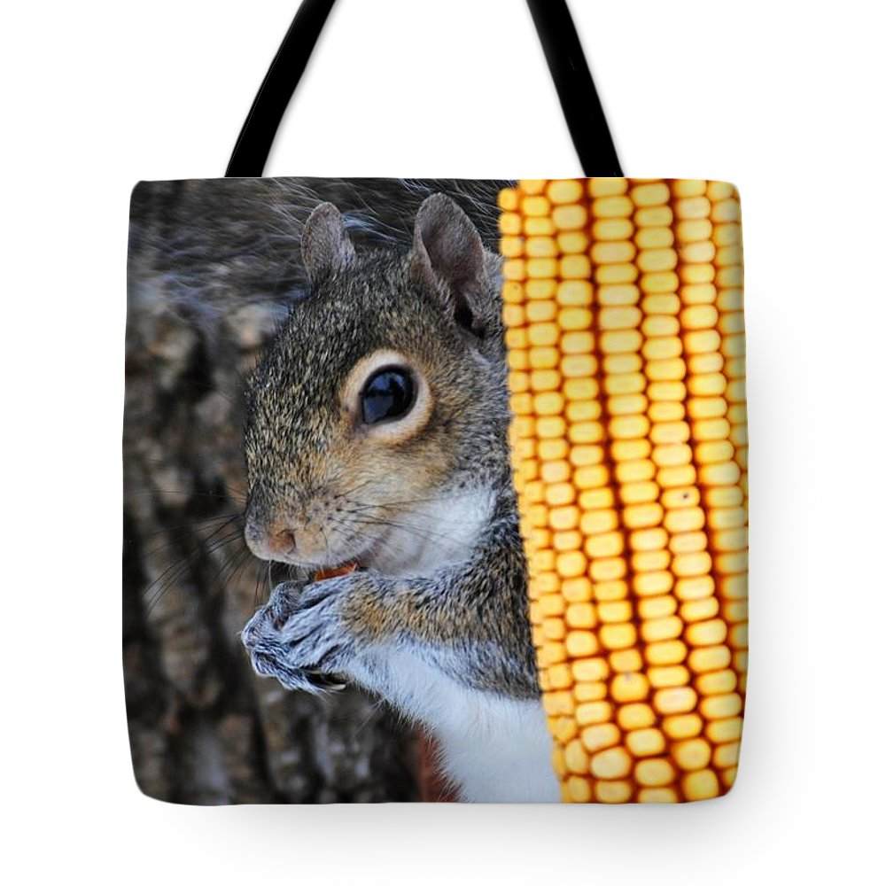 Squirrel Tote Bag featuring the photograph Squirrel Portrait by Jai Johnson