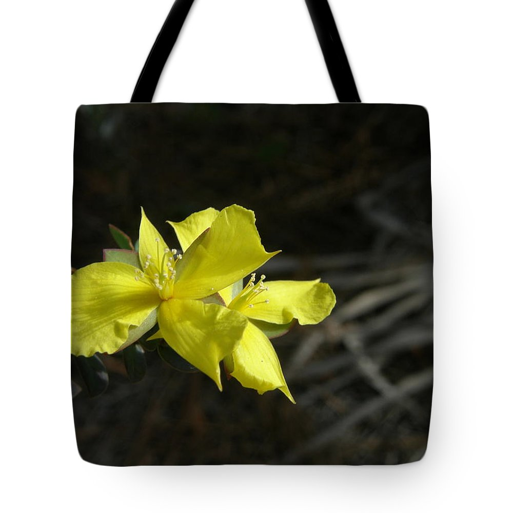 Flower Tote Bag featuring the photograph St. John by Kimberly Mohlenhoff