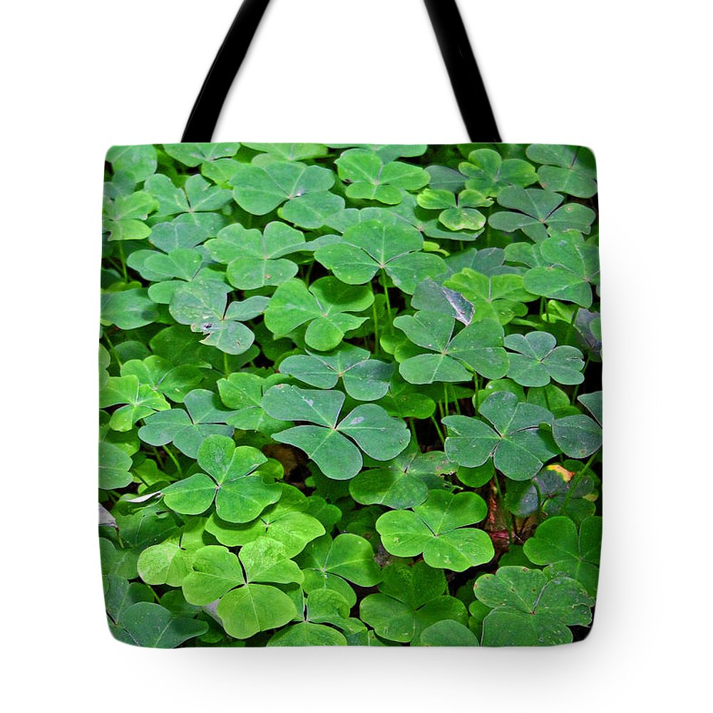 Green Clover Tote Bag featuring the photograph St Patricks Day Shamrocks - First Green Of Spring by Christine Till