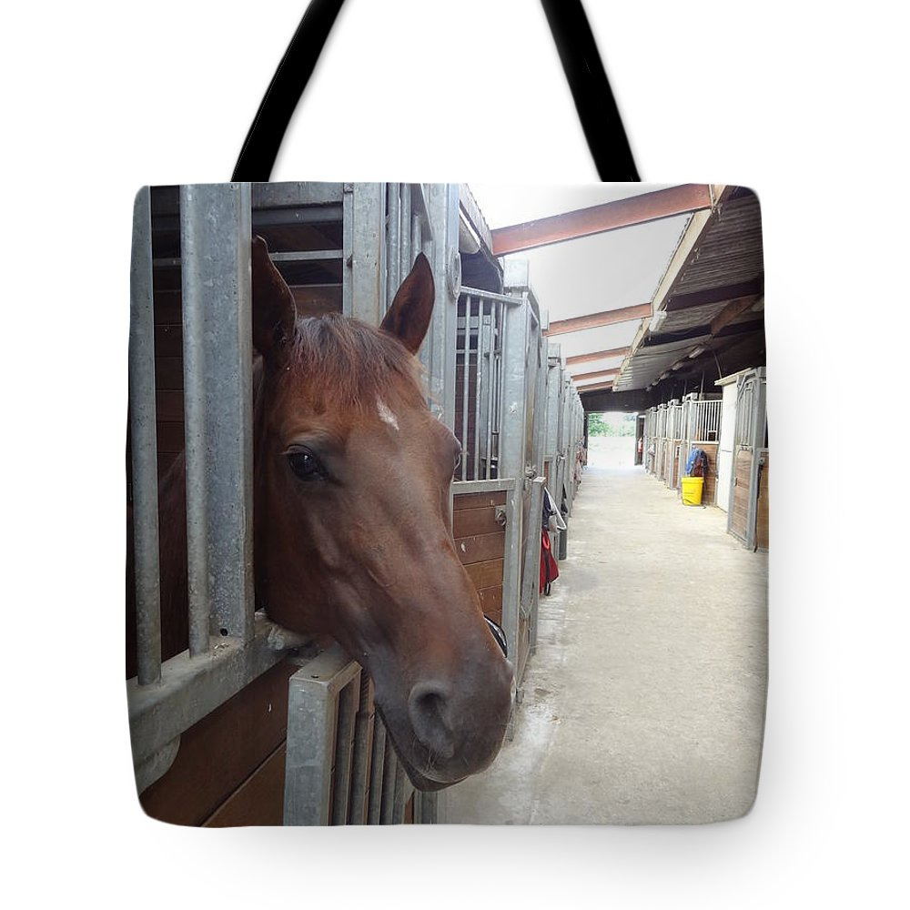 Horse Tote Bag featuring the photograph Stable-izer by Eduard Meinema