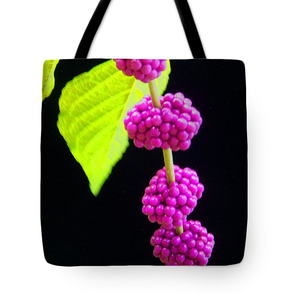 Flower Tote Bag featuring the photograph Stalk Of Seeds by Laurie Paci