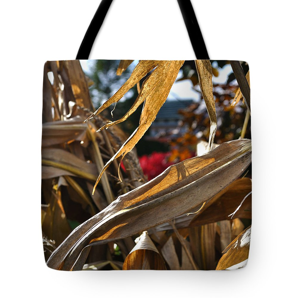Corn Stalk Tote Bag featuring the photograph Stalks by Tim Nyberg