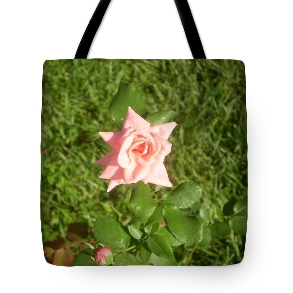 Rose Tote Bag featuring the photograph Stand Alone by Kelly Turner