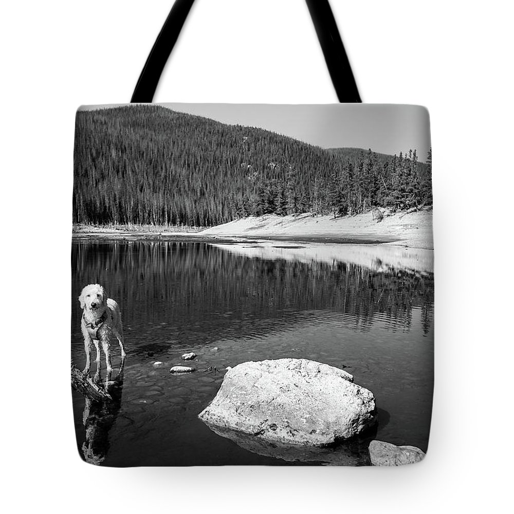 2017 Tote Bag featuring the photograph Standing In Comanche Reservoir by Cary Leppert