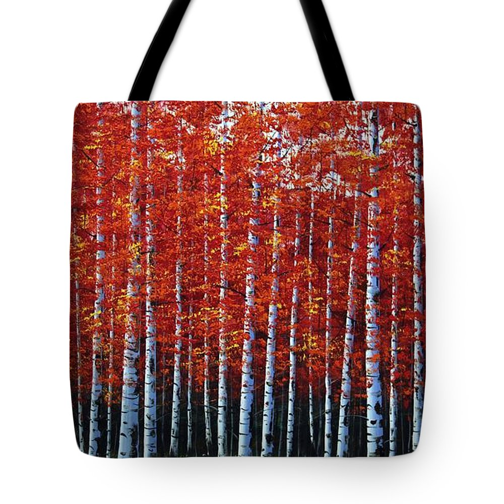 Nature Tote Bag featuring the photograph Standing Tall by Nick Difi