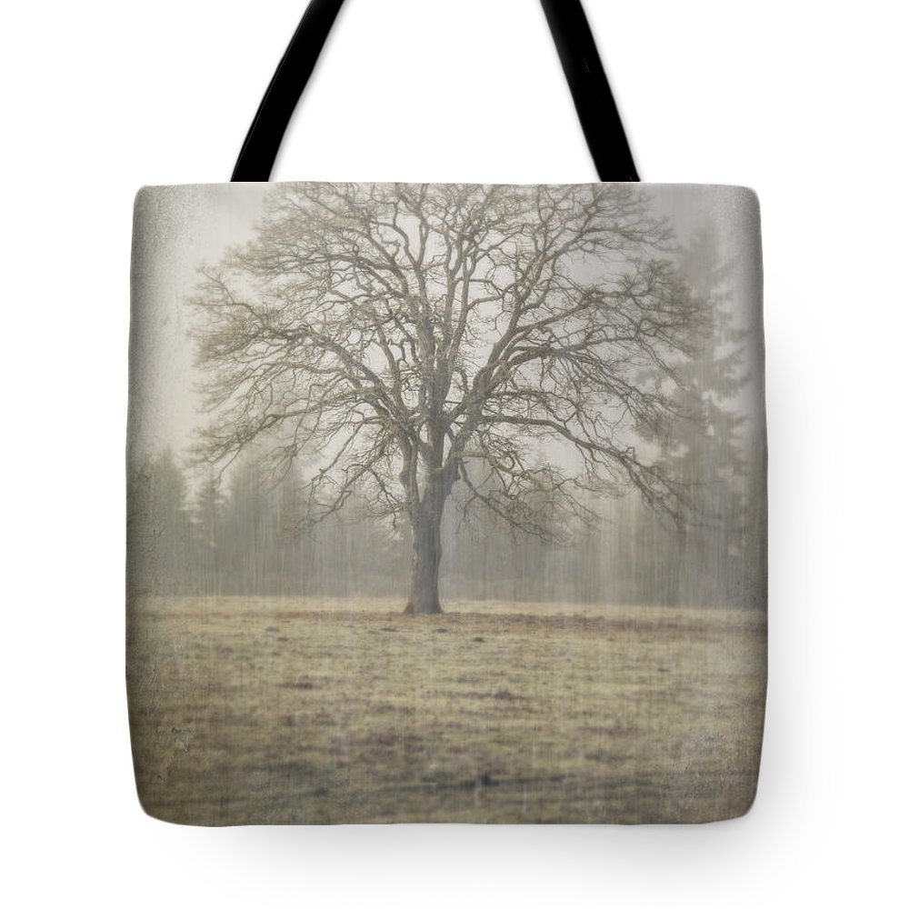 Oak Field Tote Bag featuring the photograph Stands Alone by Nichon Thorstrom