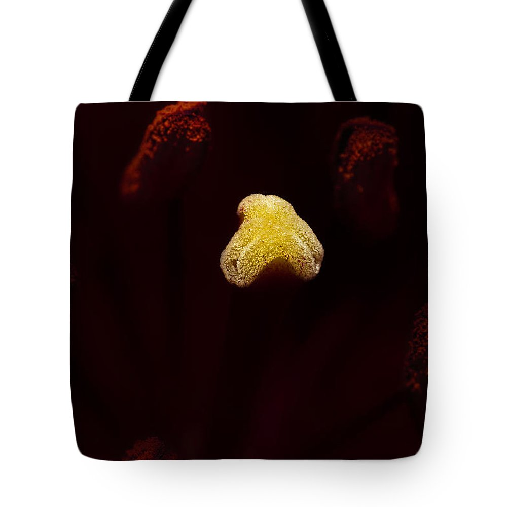 Lily Tote Bag featuring the photograph Starburst by Greg Collins