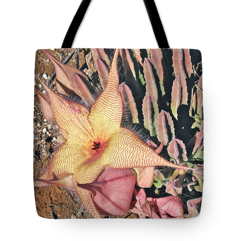 Starfish Tote Bag featuring the photograph Starfish Cactus by Michael Peychich