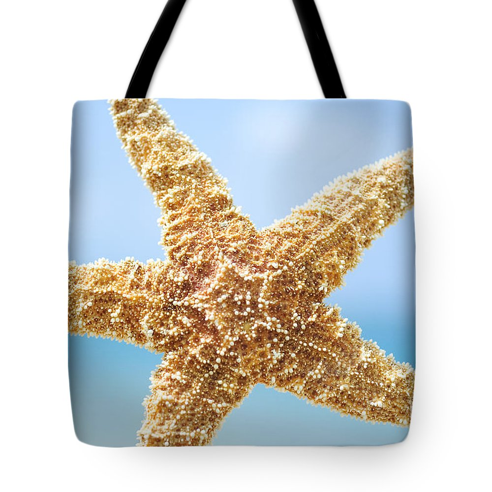 Afternoon Tote Bag featuring the photograph Starfish Close-up by Mary Van de Ven - Printscapes