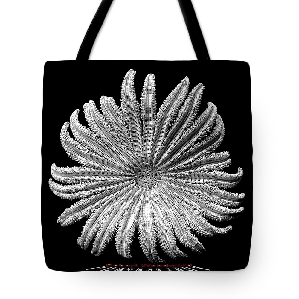 Starfish Tote Bag featuring the photograph Starfish Transparency by Robert Woodward