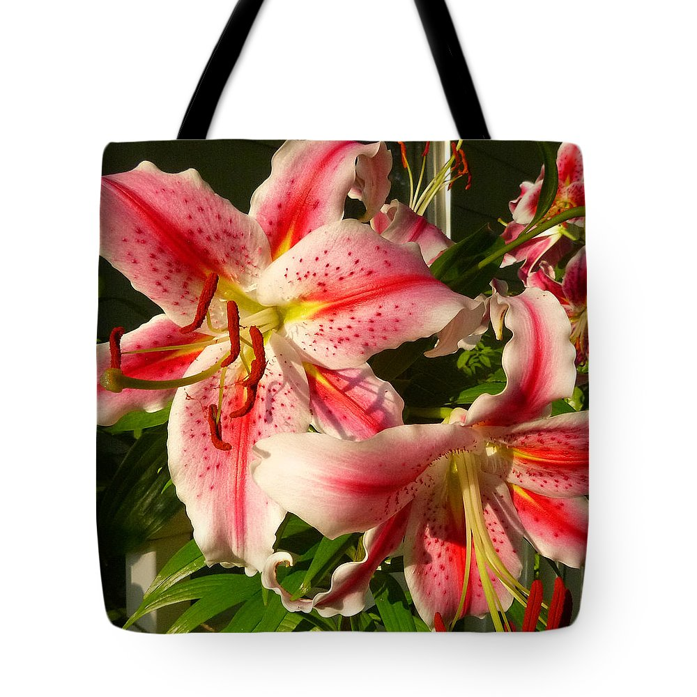 Flowers Tote Bag featuring the photograph Stargazers In Evening Light by Ellen Paull
