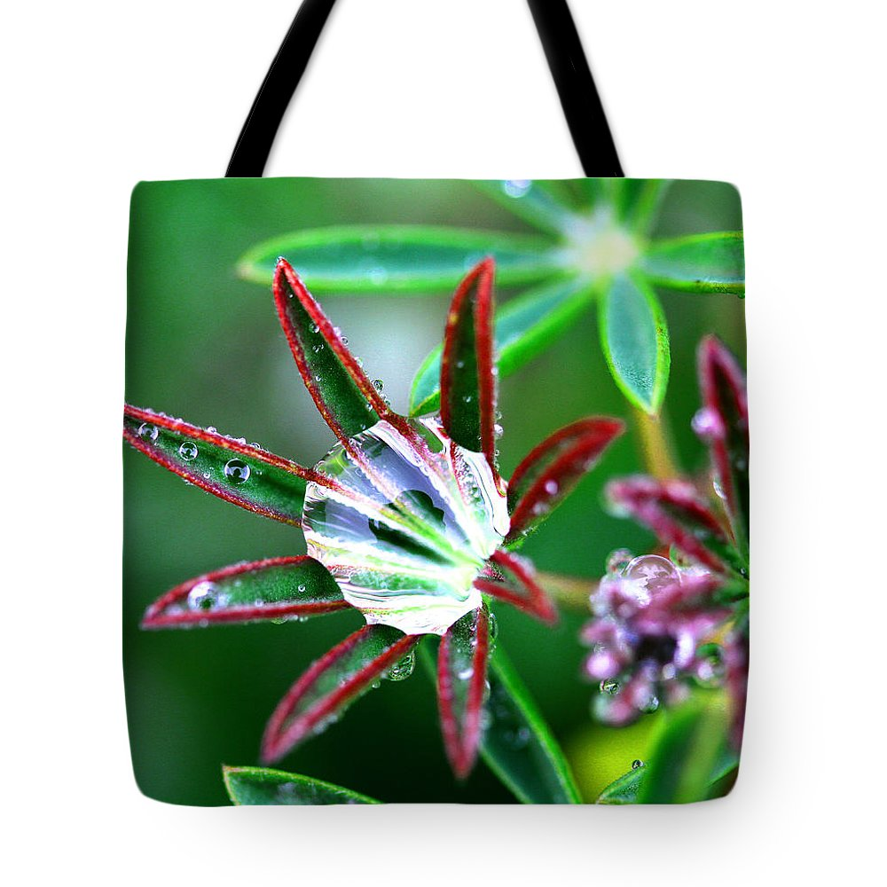 Rain Tote Bag featuring the photograph Starry Droplets by Marie Jamieson