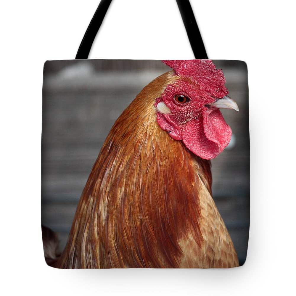 Chicken Tote Bag featuring the photograph State Fair Rooster by Carol Groenen