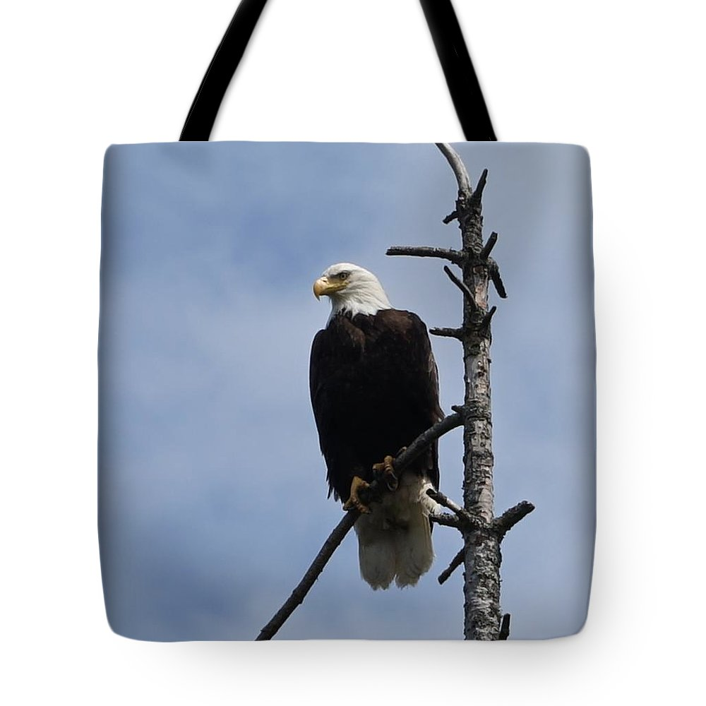 Eagle Tote Bag featuring the photograph Stately Eagle by Shirley Stevenson Wallis