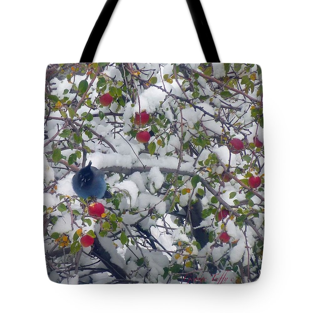 Birds Animals Landscapes Winter Appletree Colorado Rocky Mountains Snow Tote Bag featuring the photograph Stellar Jay by George Tuffy