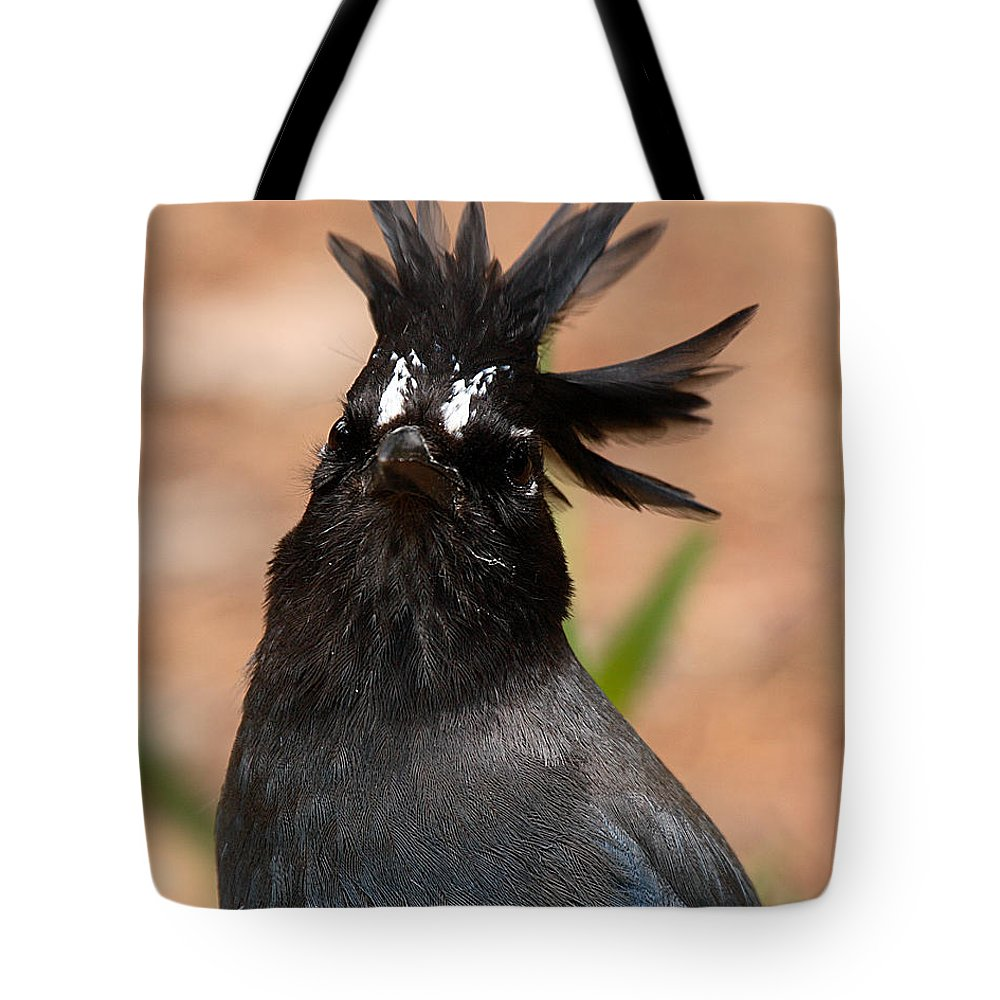 Jay Tote Bag featuring the photograph Stellar's Jay With Rock Star Hair by Max Allen