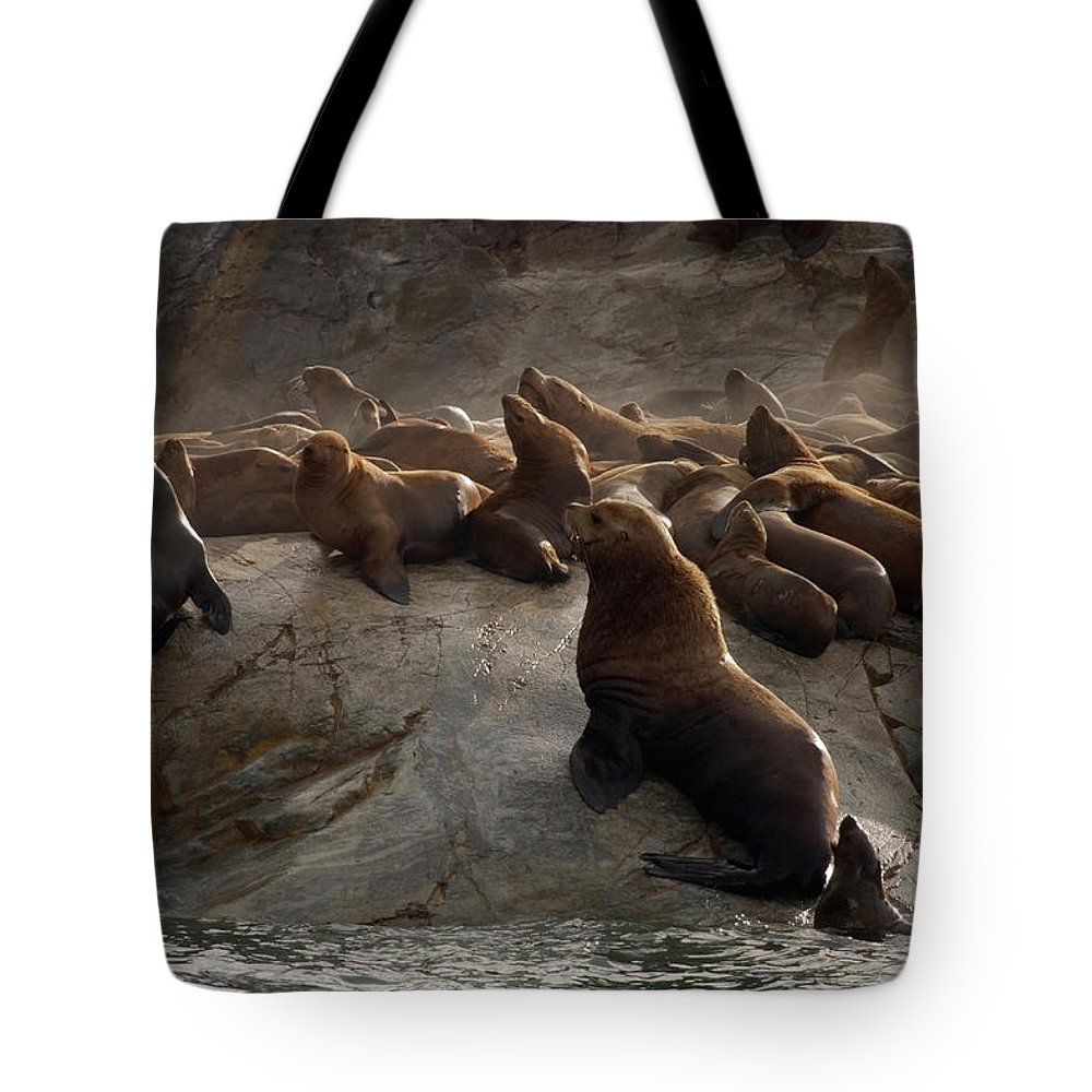 Large Group Of Animals Tote Bag featuring the photograph Stellers Sea Lions Eumetopias Jubatus by Ralph Lee Hopkins