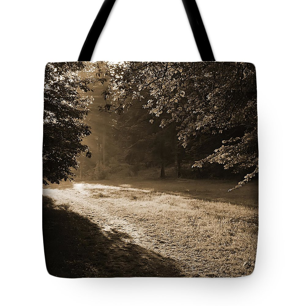 Light Tote Bag featuring the photograph Step Out Of The Shadow by Daniel Csoka