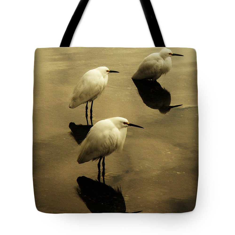 Egrets Tote Bag featuring the photograph Still by Daniele Smith