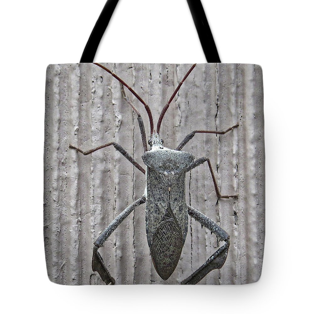 Insect Tote Bag featuring the photograph Stinkbug by Lindy Pollard