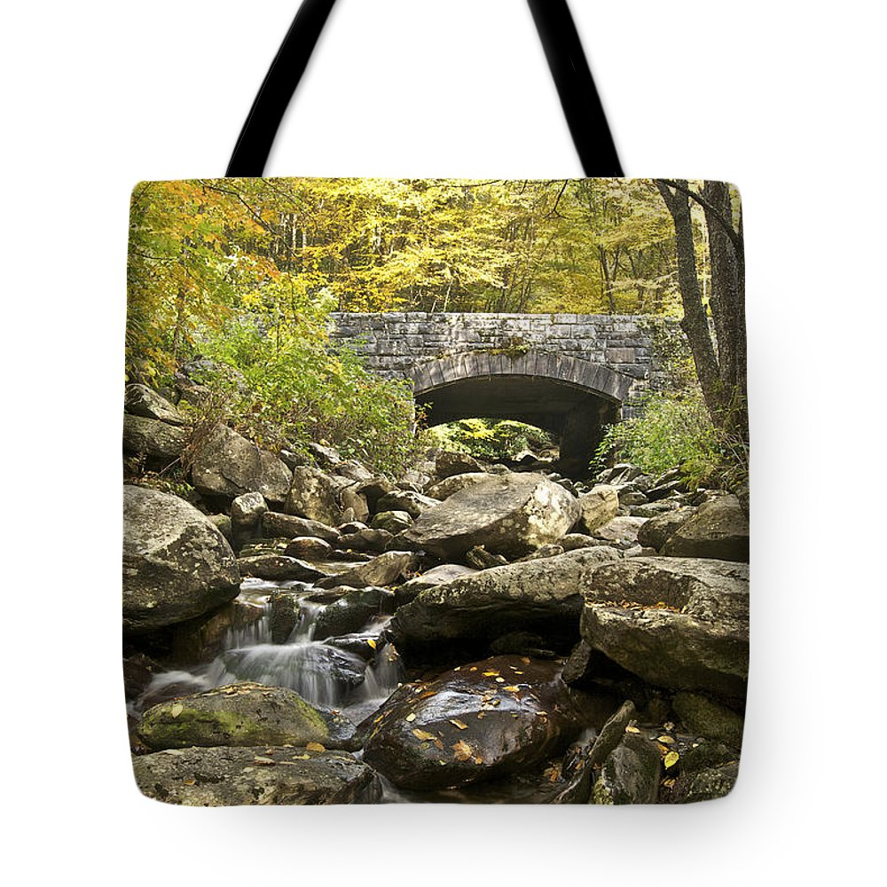 Tennessee Tote Bag featuring the photograph Stone Bridge 6063 by Michael Peychich