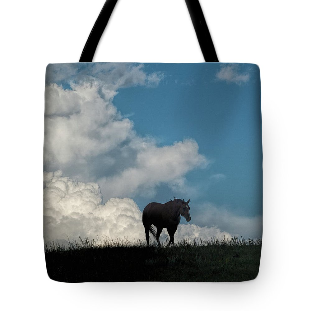 Horse Tote Bag featuring the photograph Storm Bringer by Alana Thrower