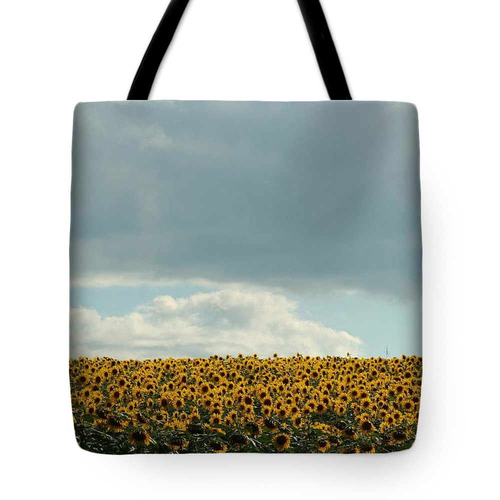 Sunflower Tote Bag featuring the photograph Storm Cloud Above Our Heads by Tammy Finnegan