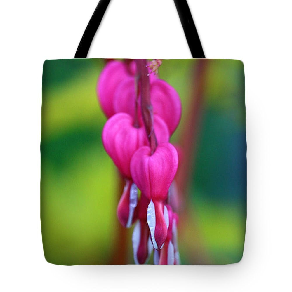 Flower Tote Bag featuring the photograph Straight On by Susan Herber