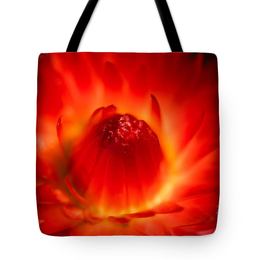 Bright Tote Bag featuring the photograph Strawflower Sombrero by Venetta Archer
