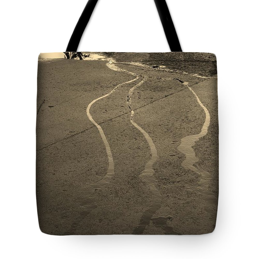 Water Tote Bag featuring the photograph Streams In The Lot by Rob Hans
