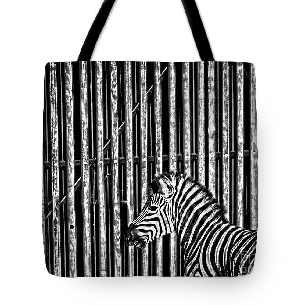 Zebra Tote Bag featuring the photograph Stripes by Sheila Smart Fine Art Photography
