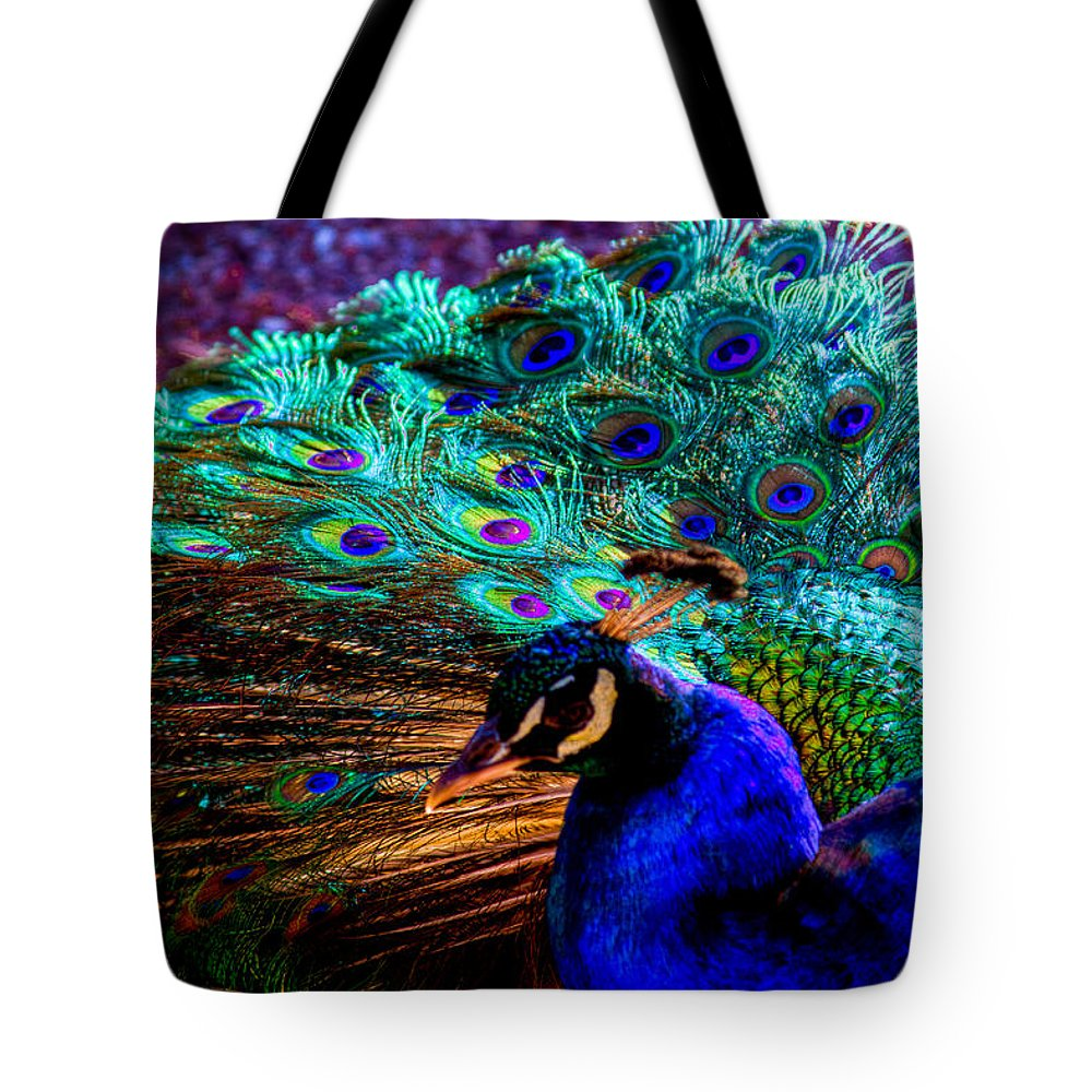 Bird Tote Bag featuring the photograph Strutting His Stuff by David Patterson