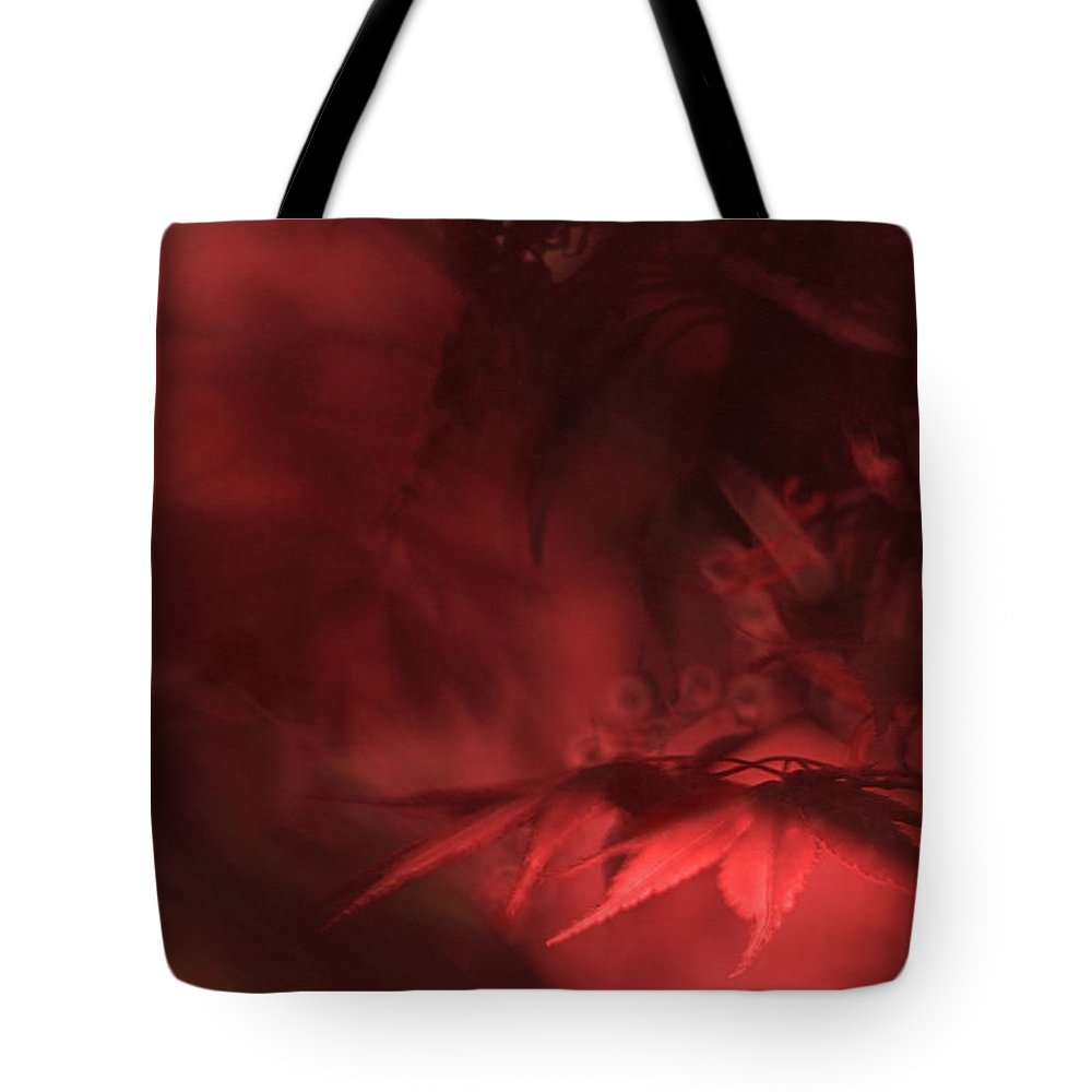 Leaves. Leaf Tote Bag featuring the photograph Study Of Uplit Leaves by Gary Bartoloni