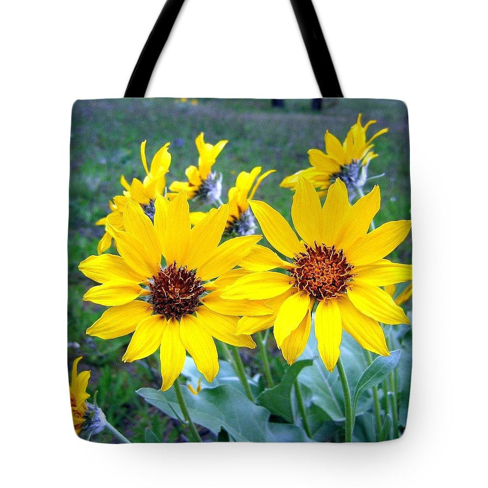 Sunflowers Tote Bag featuring the photograph Stunning Wild Sunflowers by Will Borden