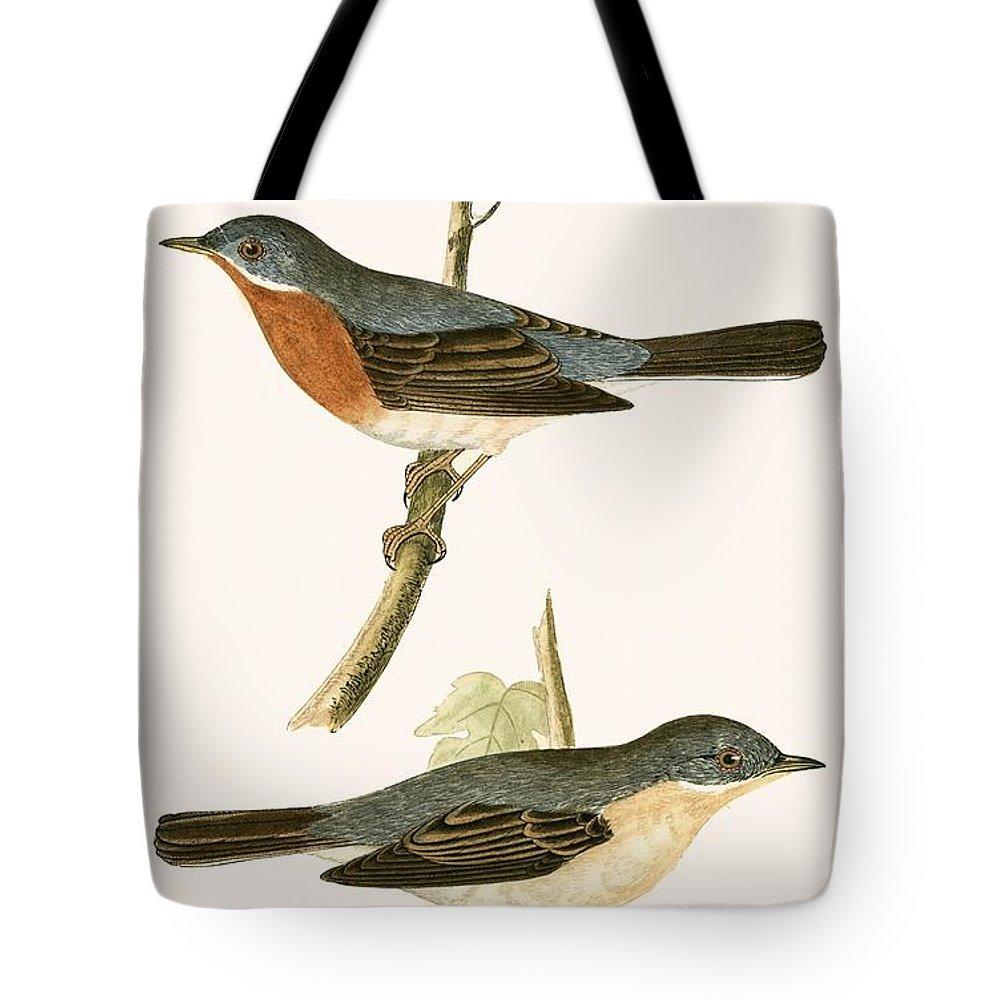 Warbler Tote Bags